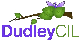 Dudley CIL